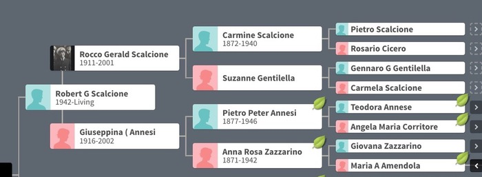 Scalcione family tree